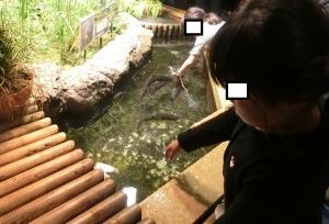 井の頭分園6