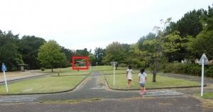 表浜東公園9