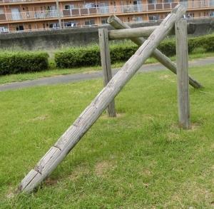表浜公園5