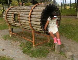 湖西運動公園7