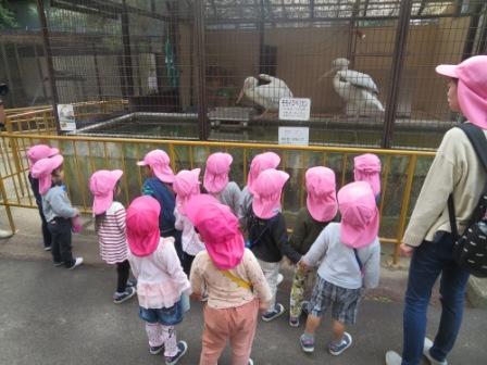 動物園さくら