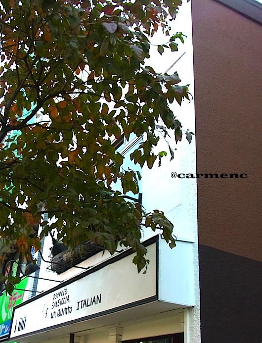 イタリアン広尾の枯葉縦