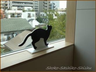20171005  黒猫  3   漱石山房記念館