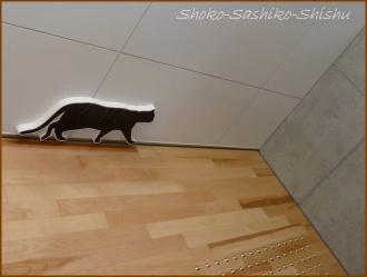 20171005  黒猫  6   漱石山房記念館