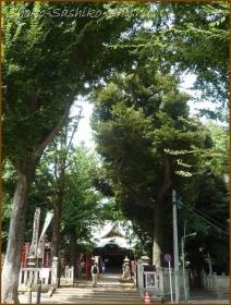 20171008 鬼子母神  2   夏秋の散歩