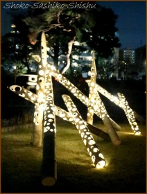 20171207  竹灯り  4    肥後灯り
