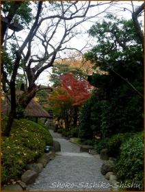 20171223  木戸門から  1    八芳園