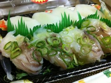 ヤリイカ姿寿司