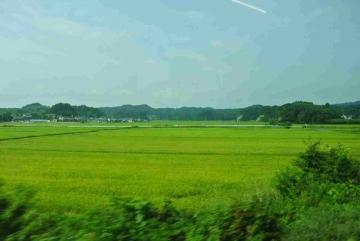 仙石線田園風景