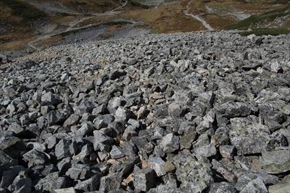 2017-9-26-27 立山23 (1 - 1DSC_5345)_R