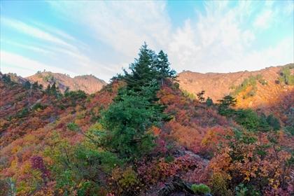 2017-10-27 平ヶ岳09 (1 - 1DSC_6157)_R