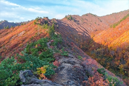 2017-10-27 平ヶ岳11 (1 - 1DSC_6161)_R