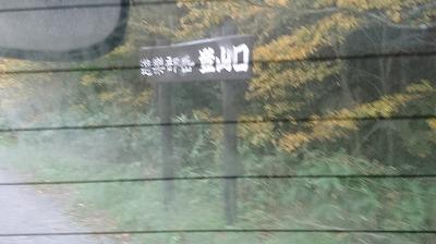 DSC_1111_201711111402274e2.jpg