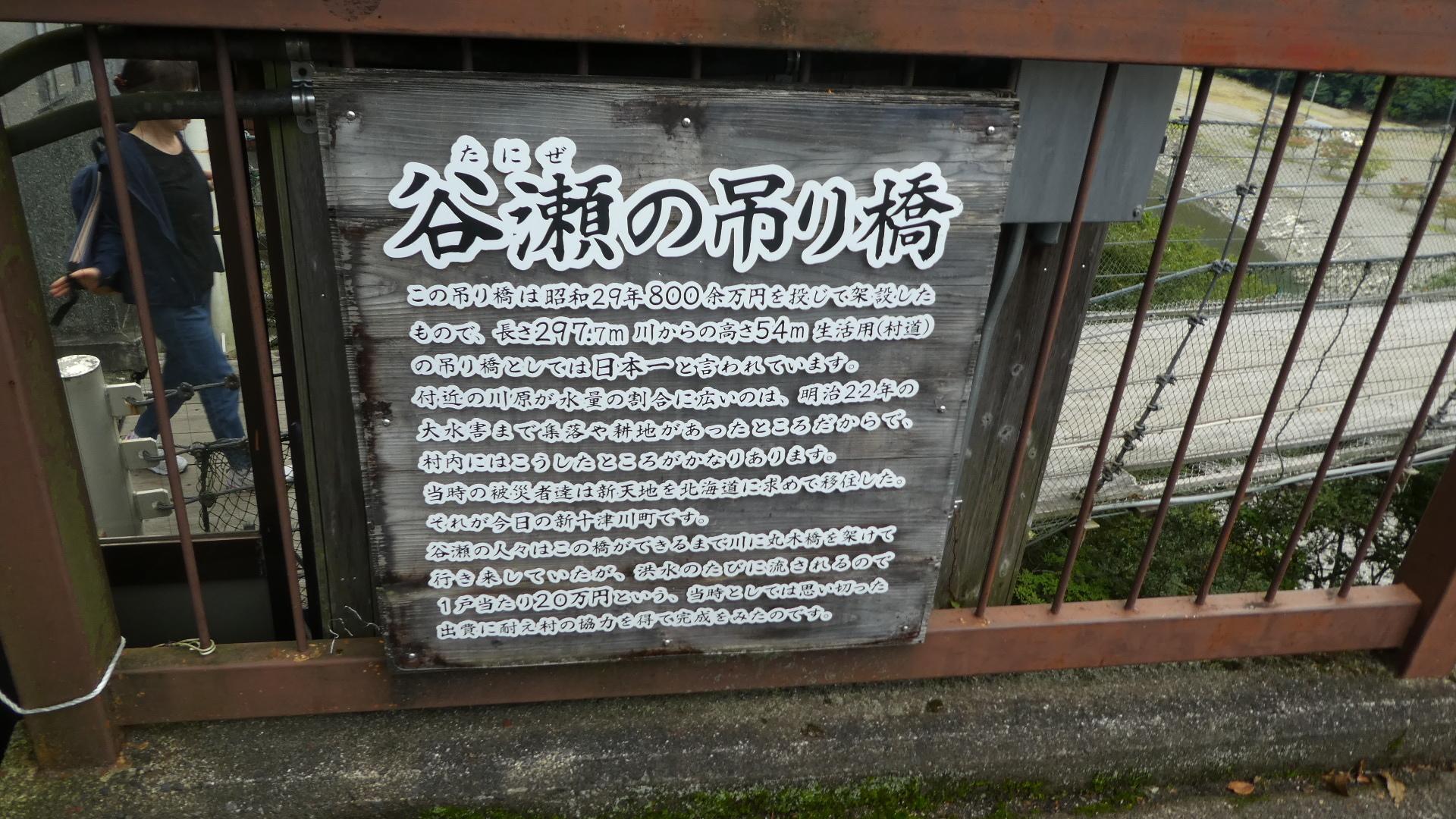 P1030337.jpg