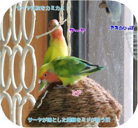 20171012133754bfd.jpg