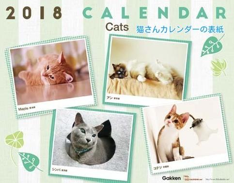 ②365カレンダー猫