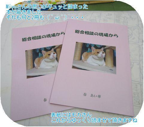 ②冊子表紙
