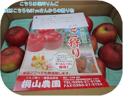 ④信州林檎