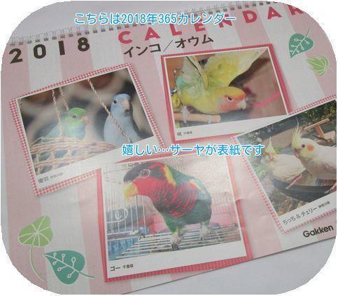 ④365カレンダー
