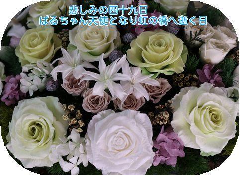 20171227115144c67.jpg