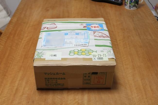 松茸カレンダー 004