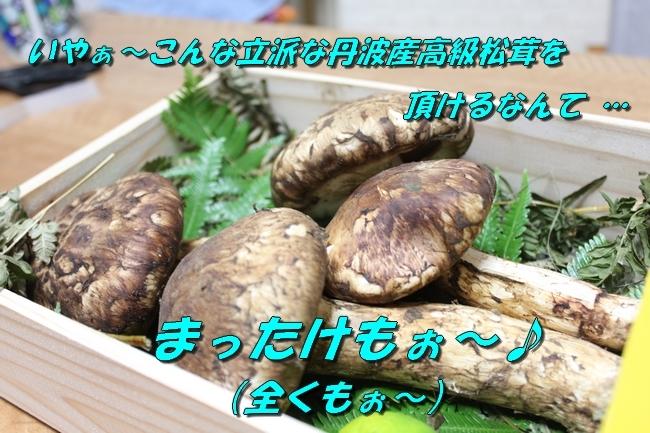 松茸カレンダー 013
