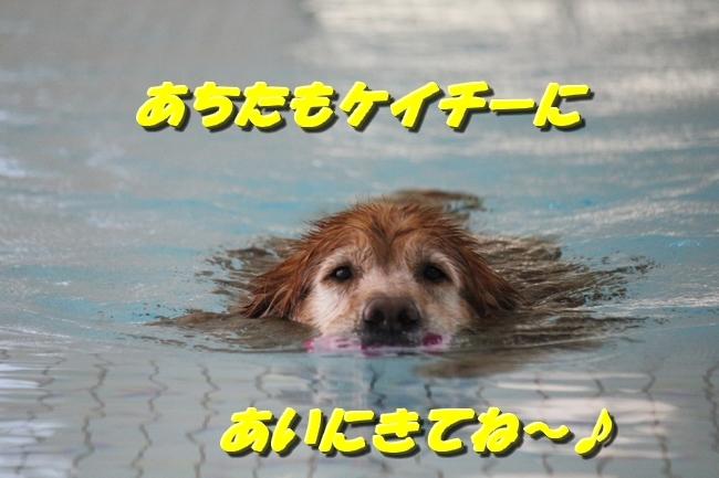 お水の日1005サボちゃん 092