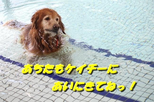 お水の日1005サボちゃん 014