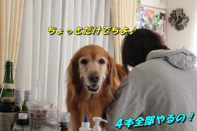 仁ちゃんとプール 024