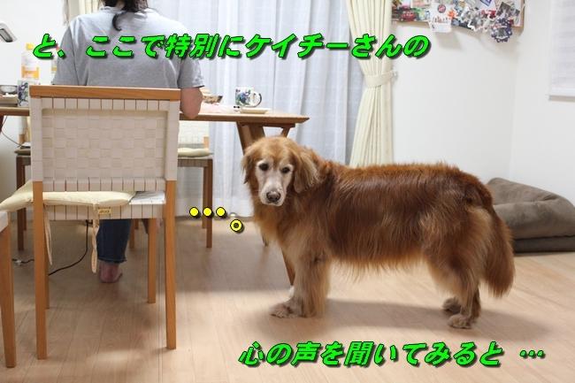 仁くんシェフ 138
