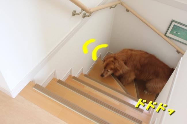 チェア階段 003