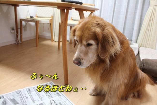 未踏峰新聞テーブル 020
