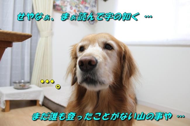 未踏峰新聞テーブル 032