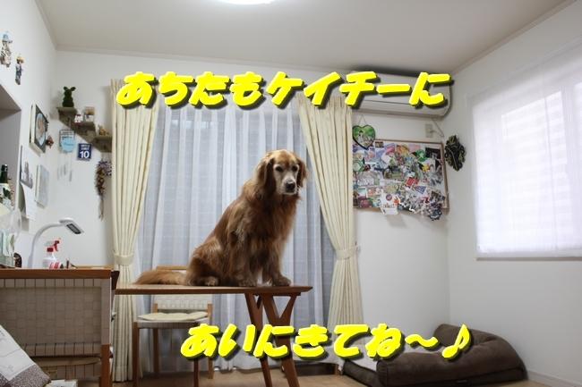 未踏峰新聞テーブル 042
