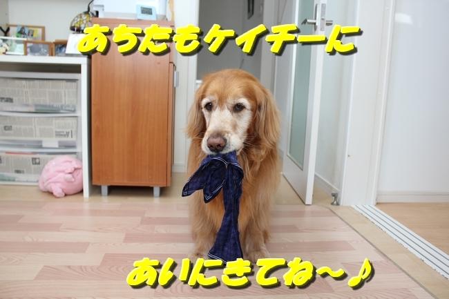ブートンハンカチ奪取 006