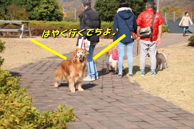 あんモナカ亡妻公園 006
