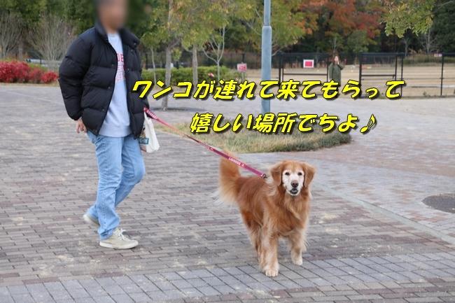 あんモナカ亡妻公園 011