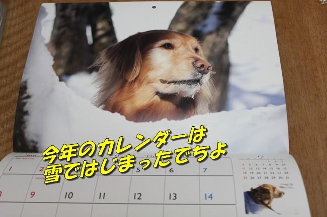 日曜のブログ 009