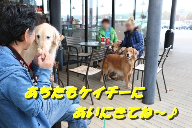 20171206202746cae.jpg