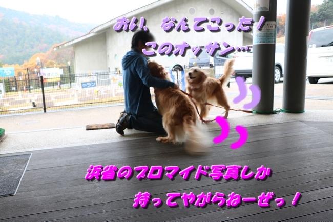 はっちちゃんルカちゃん来訪 170