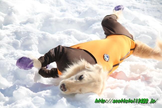雪遊び2016 1152