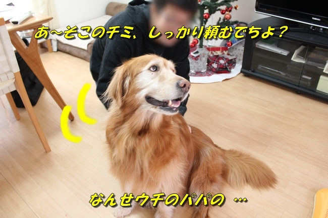 カトちゃんエアコン 079
