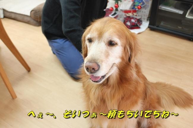 カトちゃんエアコン 083