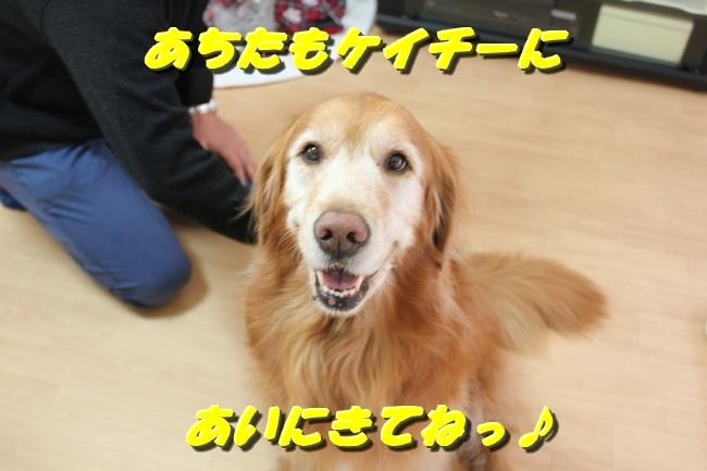 カトちゃんエアコン 086
