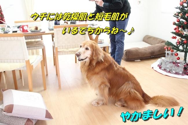 カトちゃんエアコン 118
