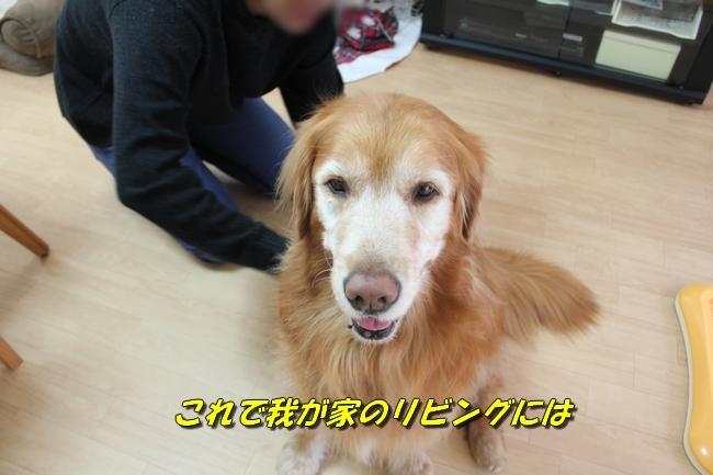 カトちゃんエアコン 077