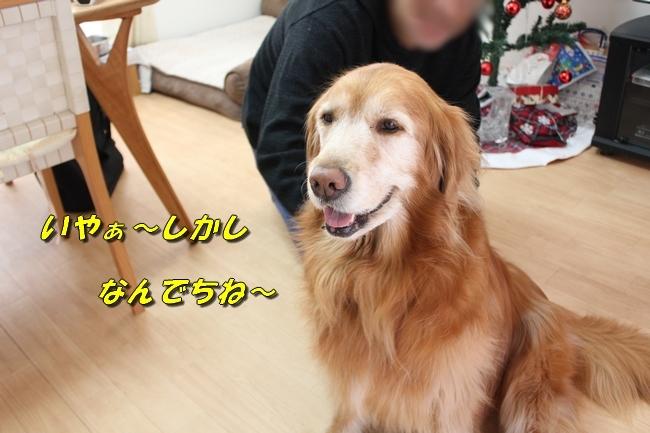 カトちゃんエアコン 081