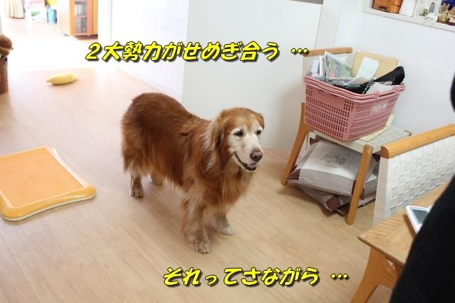 カトちゃんエアコン 104