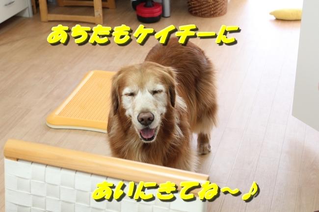 カトちゃんエアコン 108