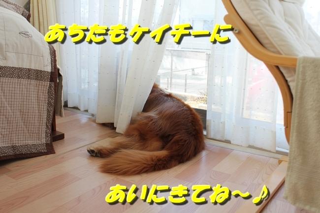 カトちゃんエアコン 050
